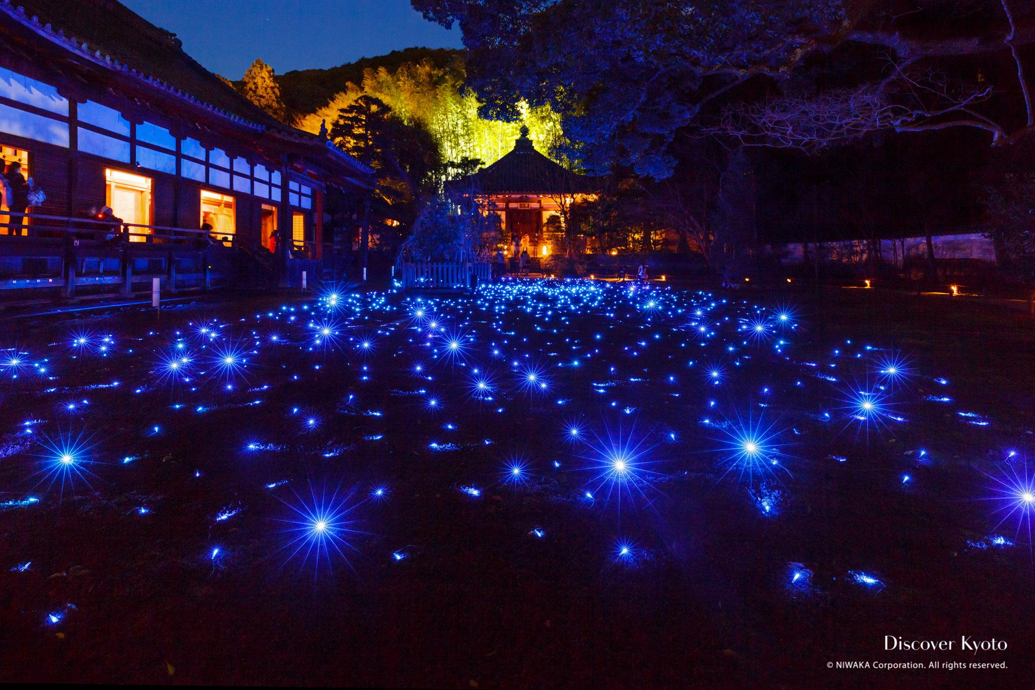 Shōren In Light Up Discover Kyoto